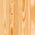 yellow pine2